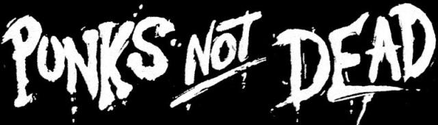 Punk-s-not-dead-punk-rock-14926257-658-521